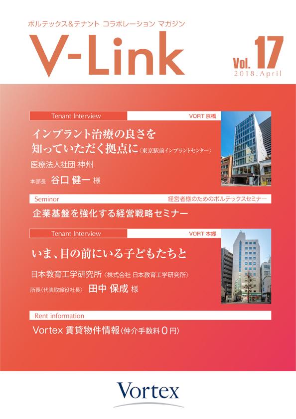 v-link_vol17