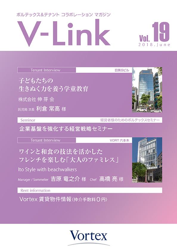 v-link_vol19